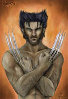 Wolverine by chibi-j