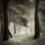 Snow in Porec... by Kaarmen