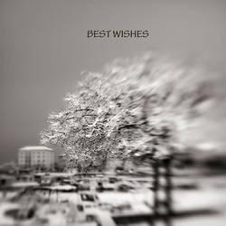 Best-wishes-2015. by Kaarmen