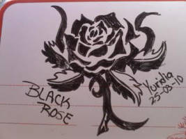 Black rose :D by LunaNegra1949