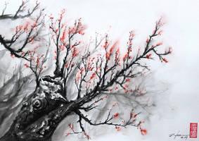 Sakura by rchaem