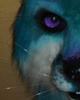 teal fox sneek peek by LilleahWest