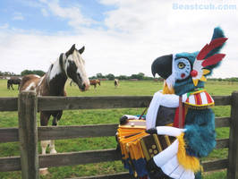 Kass: Spotted Horses by LilleahWest