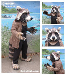 Grumpy Raccoon by LilleahWest