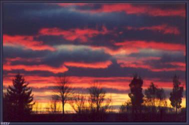 Late Autumn Sunset by hesitation