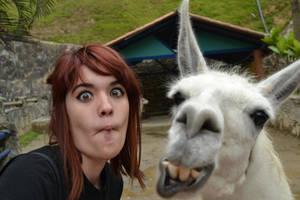 llama power by Zeroleen