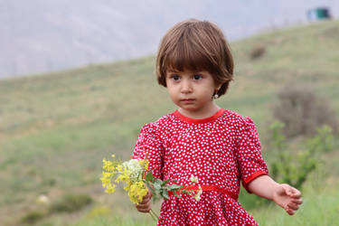 1 by Hamid-shoghy