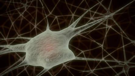 Neuron Cells by zabaz