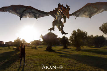 Flight by Aran34X