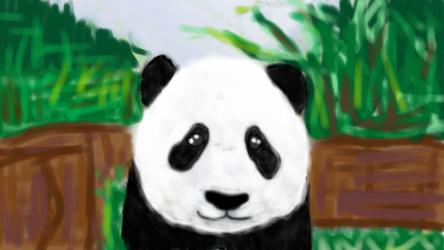 Panda by sicfi-nut