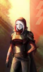 Destiny - Hunter by Jadeitor