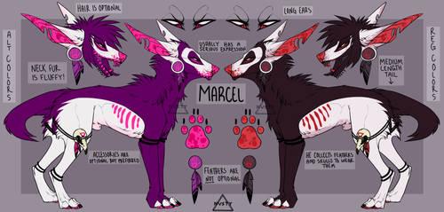 Marcel 2017 by skuIker