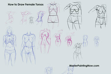 Tutorial Female Torsos by discipleneil777