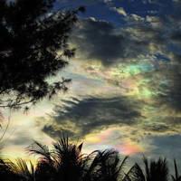 Colors Bursting by WillTC