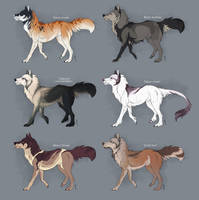 Paypal Canine adopts - CLOSED by Nereiix