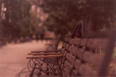 Lonely bench by chv-ph