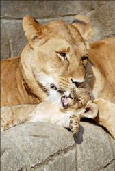 Mum, please! by Svenimal