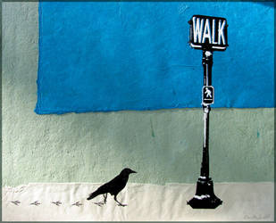 Crow Walking by 5bodyblade