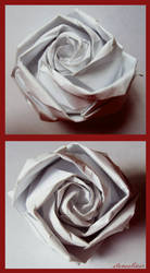 White Rose by stonesliver