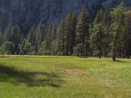 Meadow 01 by dappledstock