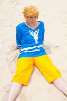 Lobster Shirt Link -LoZWW- by StarDustShadow