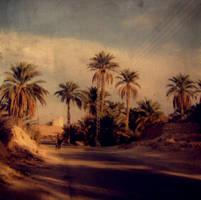 algeria by hollyjools