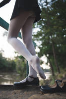Wolfords at the Park #3 by PascalsProxy
