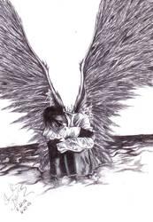 + Dark Wings + by darkeners