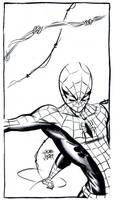 Spider-Man by JoeRuff