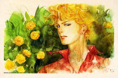 Dandelion by kir-tat