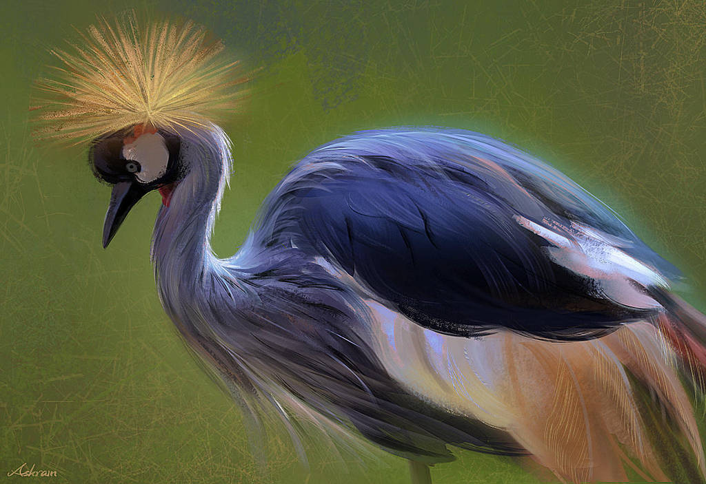 Crowned Crane by Ashramart