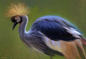Crowned Crane by Ashramart