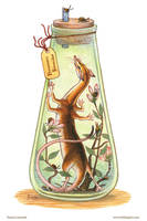 Bottled: Hexapedal Shrew by emmalazauski