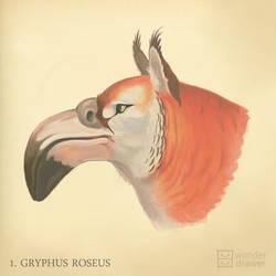 Gryphus roseus by JaimeQuianoJr