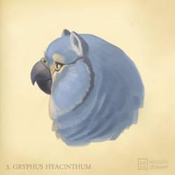 Gryphus hyacinthum by JaimeQuianoJr