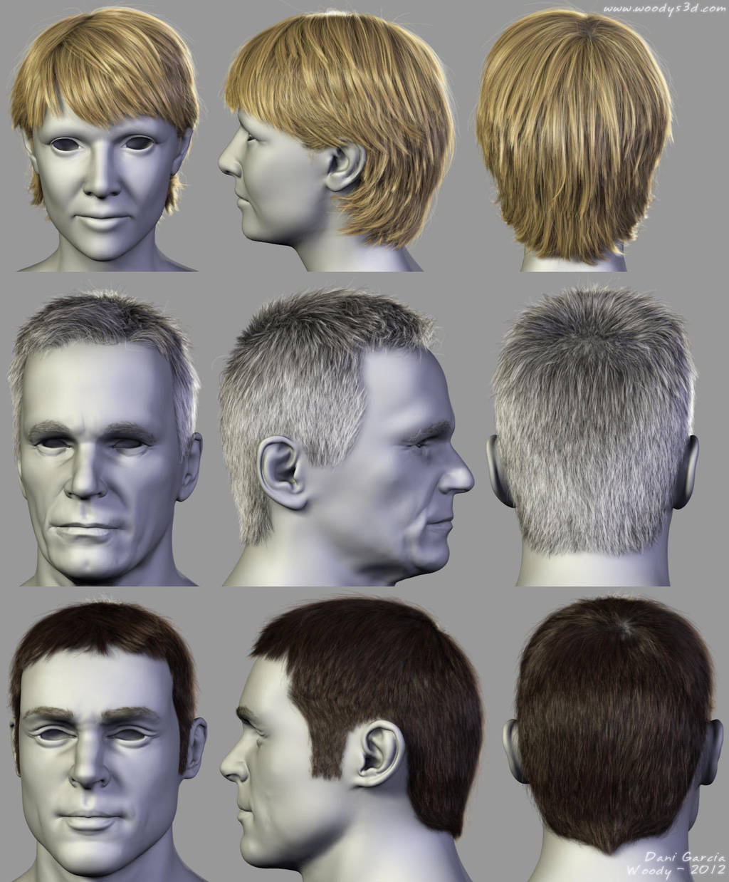 2012 Hairstyles 06 by Woodys3d