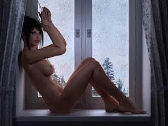 The frozen Wondow by mb109-da