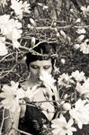 Heather in Flowers by photosynthetique