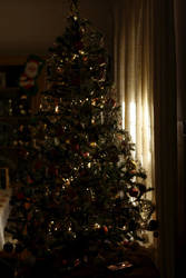 Our christmas tree by DarkFogster