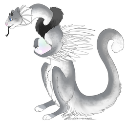 Another Dragon Cat (Pygmy Pearl Dragon) by Raptor-Tooth
