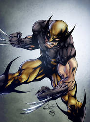 Wolverine by diabolumberto