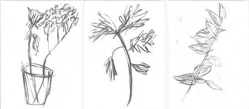 Gesture Drawings from Nature by horrorshowfreak