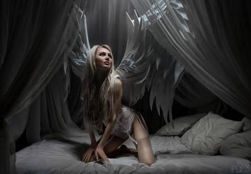 Angel of Light I by FlexDreams