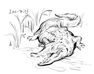 Crocodile by Ixentrick