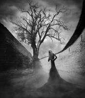 Black widow... by WWWest