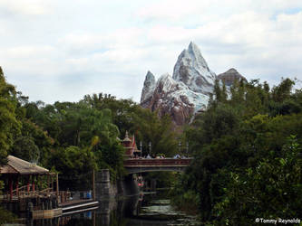Mt. Everest, Florida by tijir
