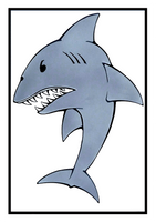 Shark card by wheelgenius