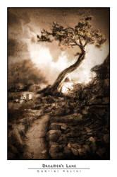 Dreamer's Lane by kittystalker