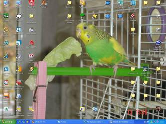 My desktop by MichelleBrujah