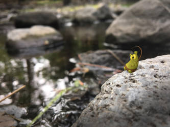 Toadbear's Big Catch by SillyNate